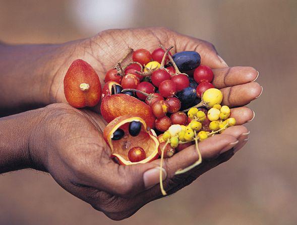 Indigenous Foods