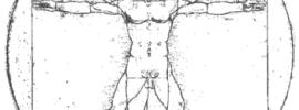 cómo-funciona-el-cuerpo-humano-270x100