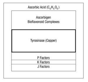 vitamina c vs acido ascorbico